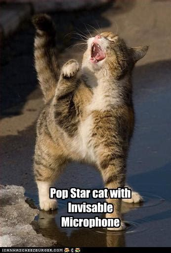 Pop Star cat with Invisable Microphone - Cheezburger